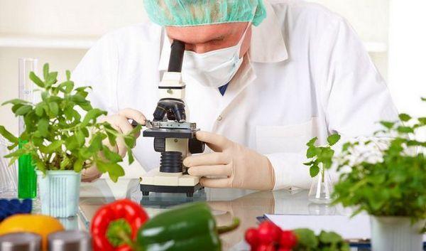 10 Motive științifice alimentele de casă de casă sunt mai bune decât alimentele comerciale