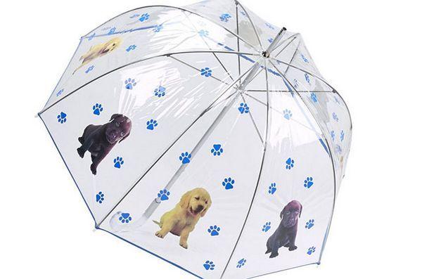 Lucruri de primăvară: umbrelă pentru câini
