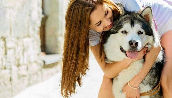 20 Cele mai multe rase feminine de câini pentru femei și bărbați