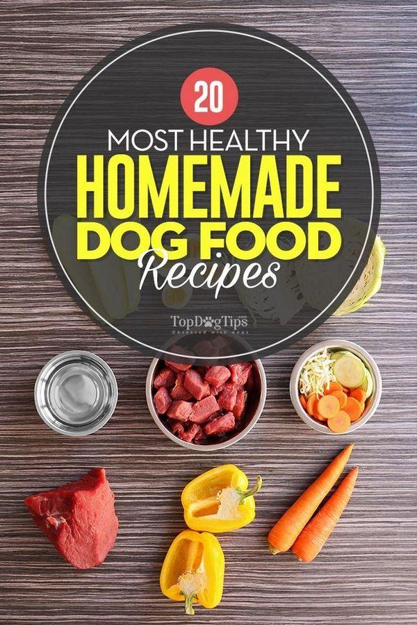 20 Rețete cele mai sănătoase de casă pentru câini