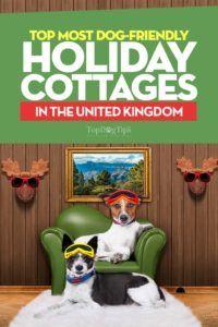 32 Cabane de vacanță pentru câini în Marea Britanie
