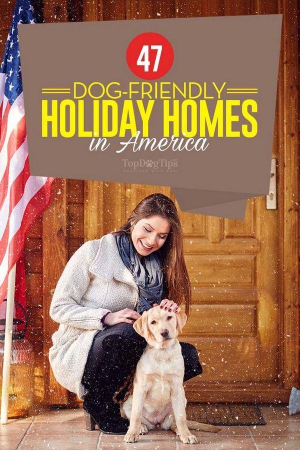 47 Case de vacanță pentru câini în SUA