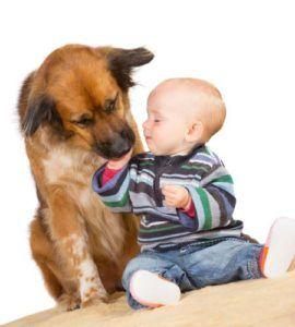Un studiu arată modul în care câinii pot îmbunătăți starea de sănătate a copiilor mici