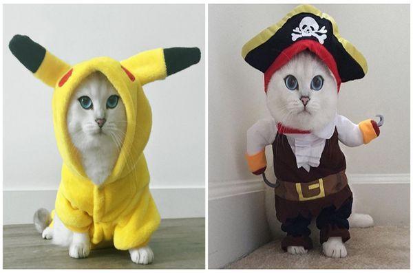 National-dress-ta-Pet-Day-7