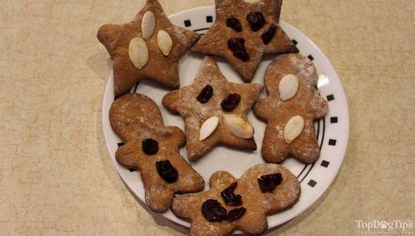 Câine de Crăciun trata rețeta cu semințe de dovleac și afine
