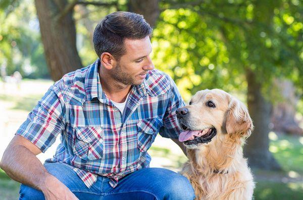 Sfaturile datând de la un tip de câine nebun
