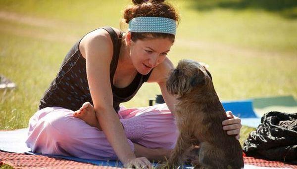 Beneficii Doga pentru câini și proprietari