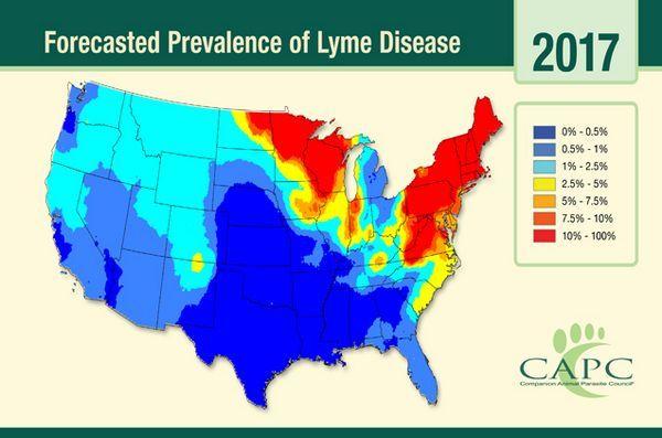 Cercetatorii au impartasit o noua harta de prognoze a bolii Lyme pentru Statele Unite