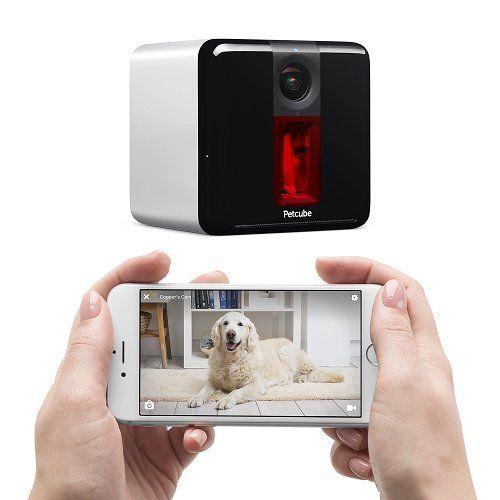 Giveaway: petcube play camera de câine (valoare de 199 USD)