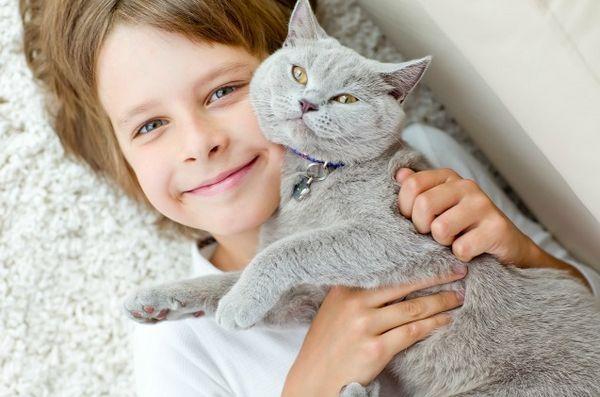 Grantul Habri ajută la studierea impactului adopției pisicii de adăpost de către copiii cu autism