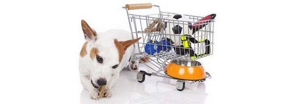 Ianuarie cele mai bune oferte pe produse de câine
