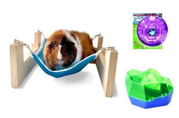 Kaytee îi ajută pe hamsteri să-l lumineze cu produse noi