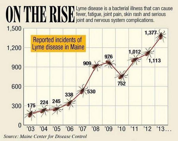Boala Lyme este în creștere