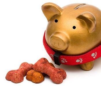 economisind bani pentru hrană pentru animale de companie