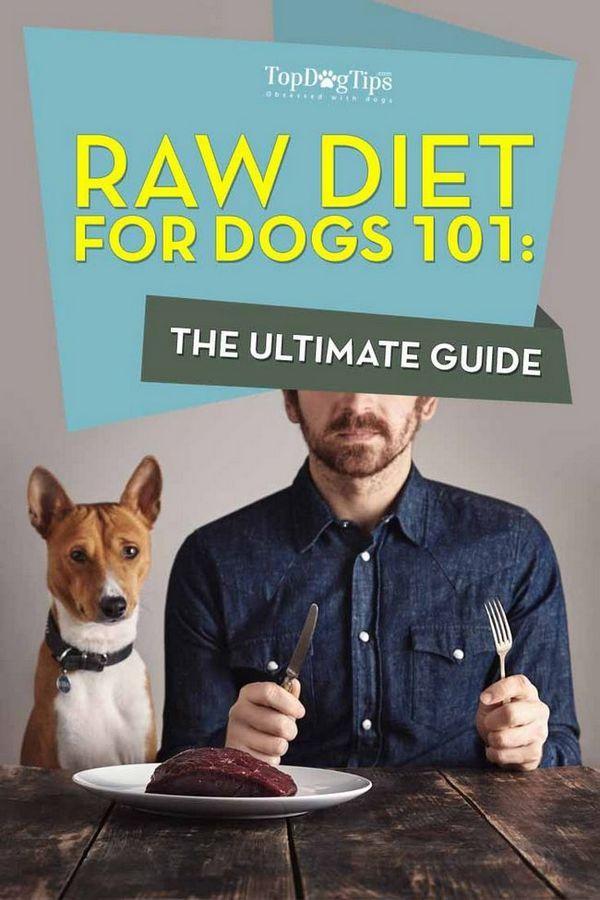 Dieta brută pentru câini 101