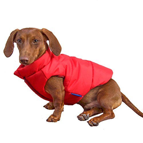 Revizuire: haina de câine düngo reversibilă (2018)