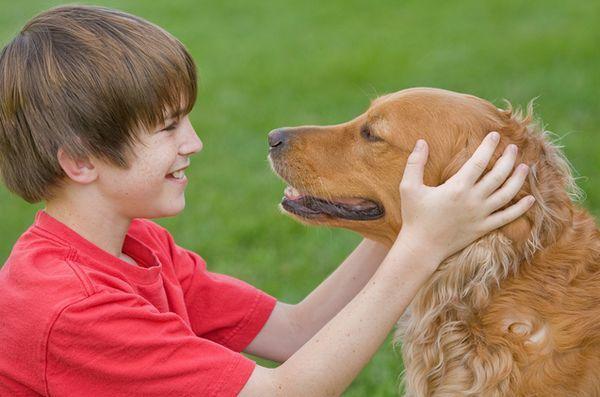 Studiu: câinii familiali beneficiază de copii cu dizabilități