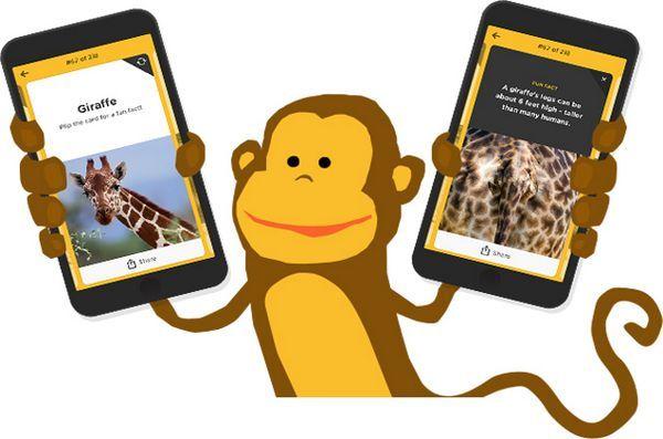 Tailsup! App ajută copiii să ajungă la fundul conștientizării animalelor