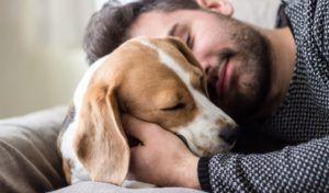Știința din spatele iubirii de oxitocină și de catelus