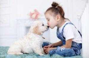 Ghidul final pentru creșterea copiilor cu câini: 17 lucruri pe care fiecare părinte trebuie să le cunoască