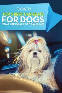 Top 15 cele mai bune scaune auto pentru câini