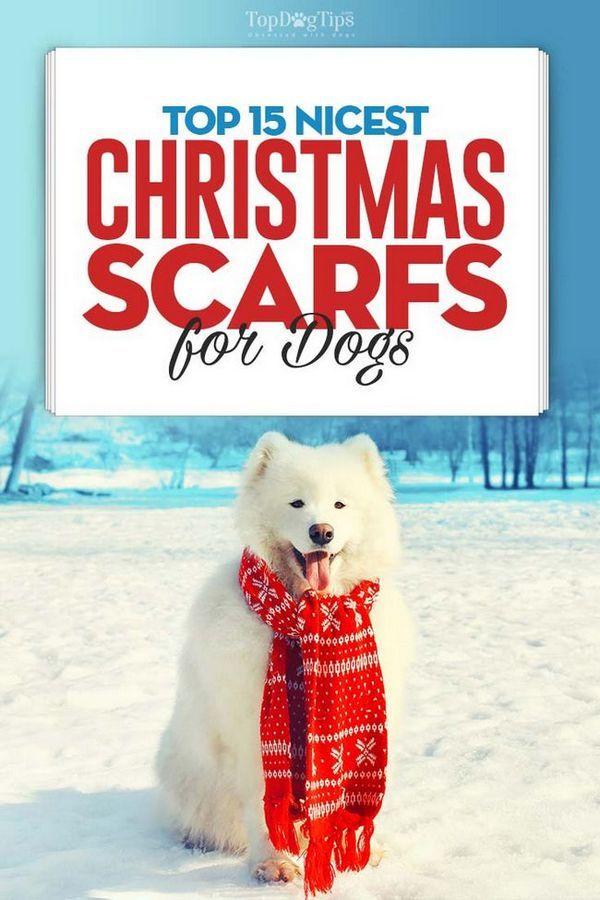 Top 15 eșarfe de crăciun pentru cei mai buni câini
