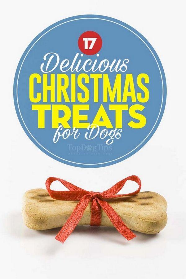 Top 17 Crăciun tratează pentru câini