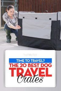 Top 20 cutii de călătorie pentru cei mai buni câini