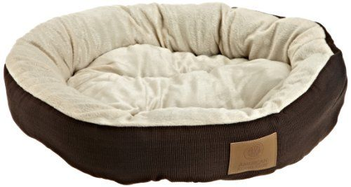 Cele mai bune paturi de câine ieftine