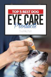 Top 5 cele mai bune produse pentru îngrijirea ochilor pentru câini