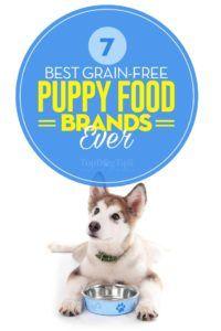 Top 7 branduri de cele mai bune cereale fără cereale
