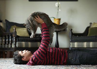Guy exploatație este pisica